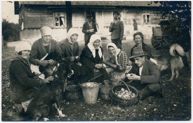 Umbusi-Kablaküla kartulikoorijad koos 4 talukoeraga.